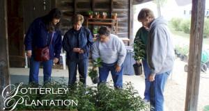 Start Your Garden at the Sotterley Plant Sale and Exchange!